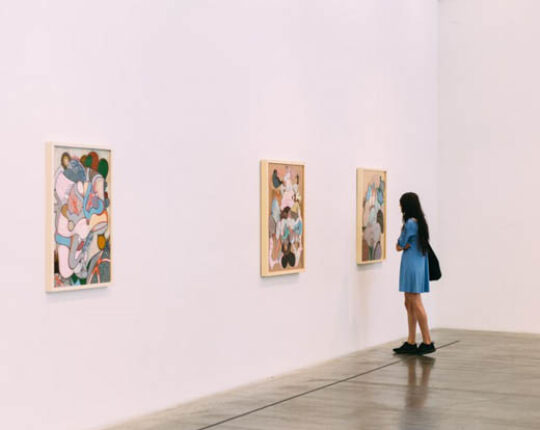 The 5 Things Every Aspiring Art Enthusiast Should Know About